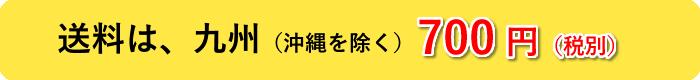 送料 九州 700円